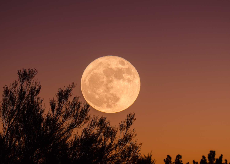 La Super Lune Des Fleurs Illuminera La Nuit Du 26 Mai